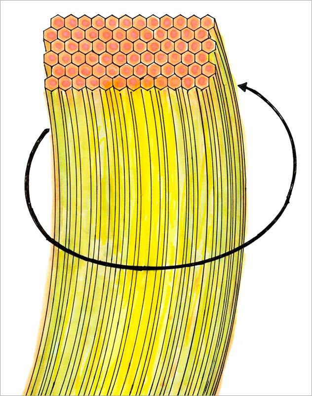 螺旋回転エネルギーを伝導するマントルの図
