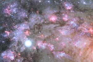宇宙時空間の生命活動