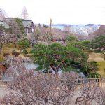 塩竈神社へ