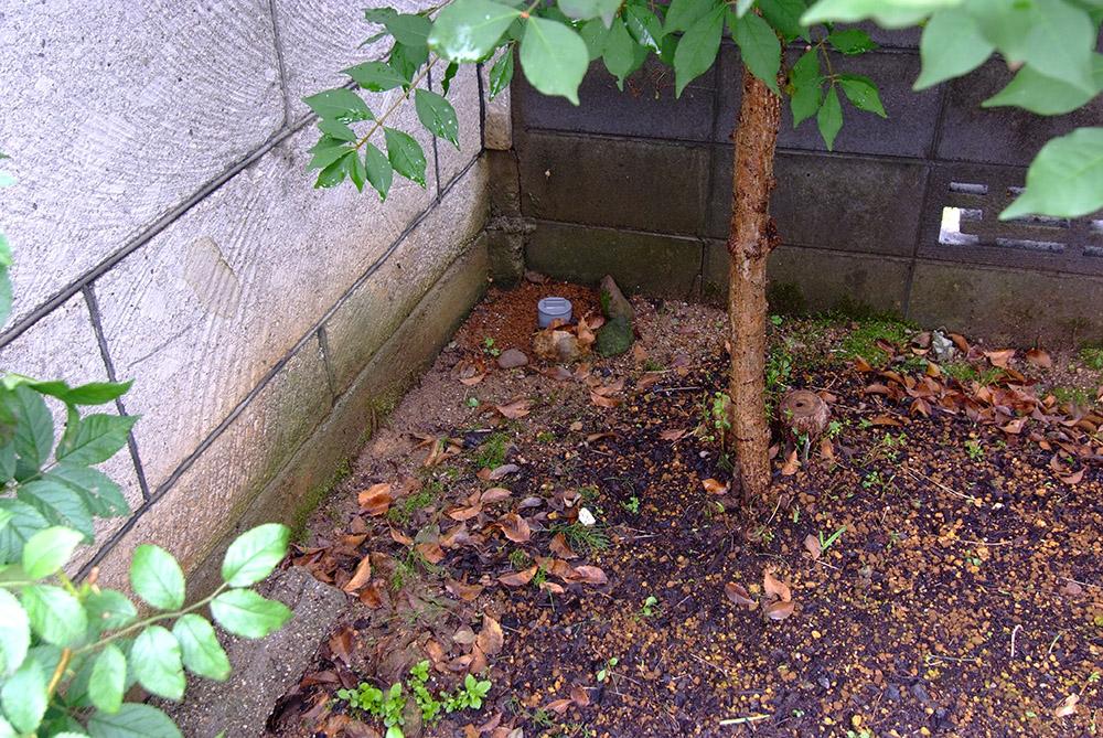 庭に埋めた環境調和カード埋設用