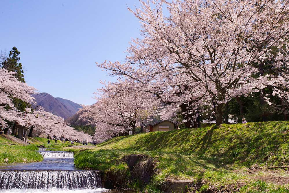 福島の春の名所